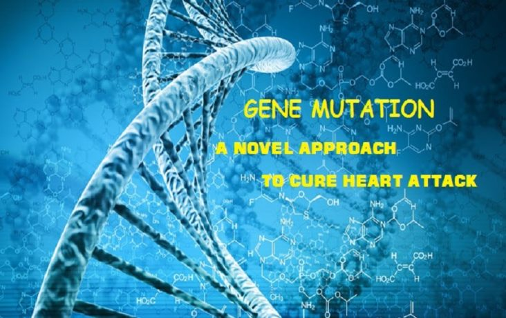 Gene Mutation Downturns Heart Attack Risk
