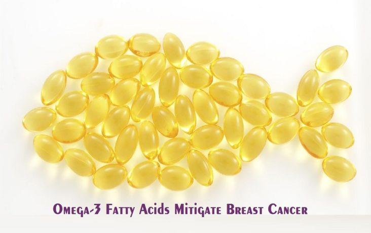 Omega-3 Fatty Acids Safeguard against Risk of Breast Cancer in Obese Postmenopausal Women