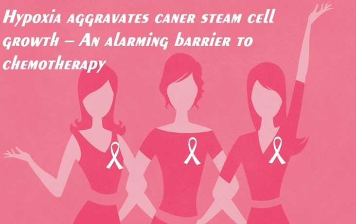Oxygen-Scarce Environments Provoke Growth of Breast Cancer Stem Cells