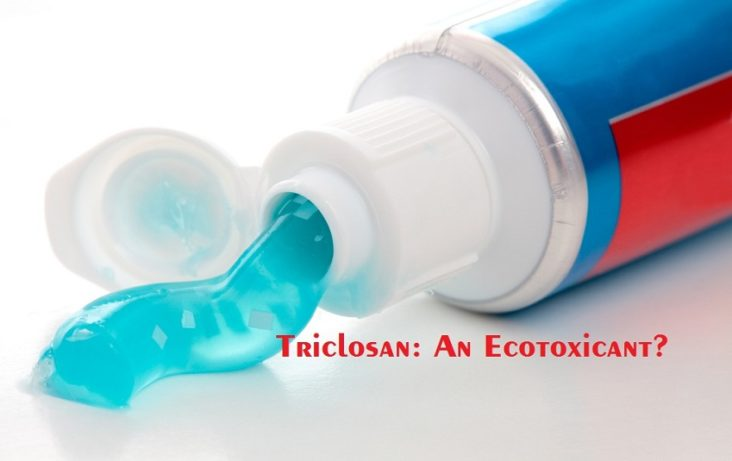Is the Antimicrobial Agent Triclosan a Double-edged Sword?