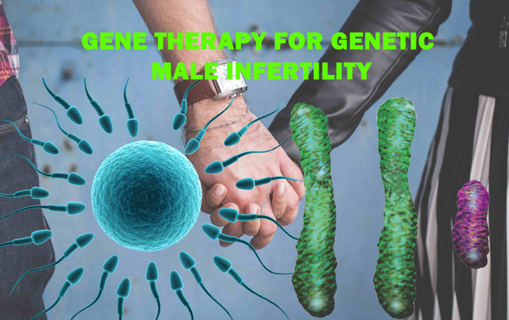 Gene-Therapy-for-Genetic-Male-Infertility