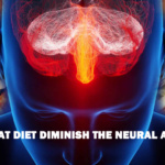 High Fat Diet Diminish the Neural Activity