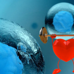 Cardiac Stem Cell from Young Heart Cures the Myocardial Infraction