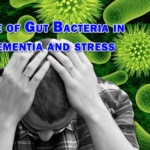 Role of Gut Bacteria in dementia and stress